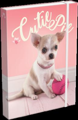 žbox na sešity A5 Pet Cutie Pie 18246410(5997416524648)