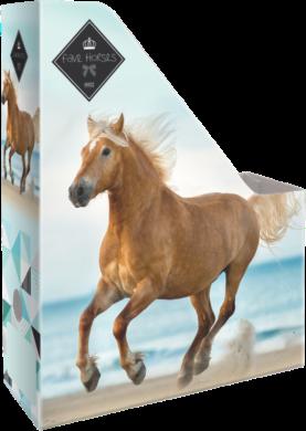 box na sešity skládací A4 Geo Horse Beach 18569509(5997416556953)