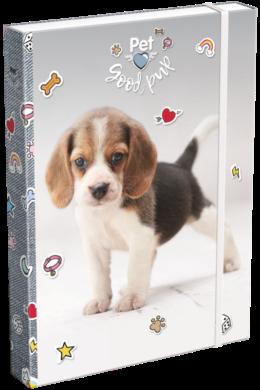 box na sešity A4 Pet Good Pup 19628414(5997416562848)