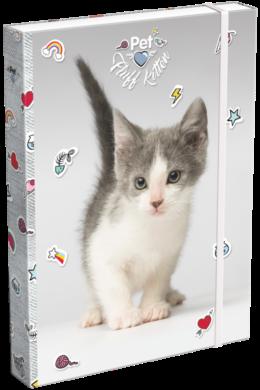 box na sešity A4 Pet Fluff Kitten 19628513(5997416562855)