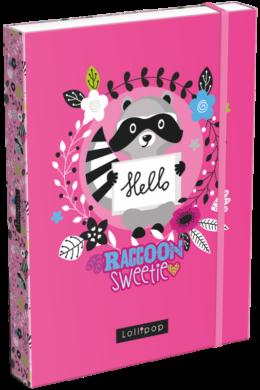 box na sešity A5 Lollipop Raccoon 21873152(5997416587315)