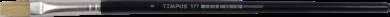 štětec Tempus plochý lak  8(8594033822361)