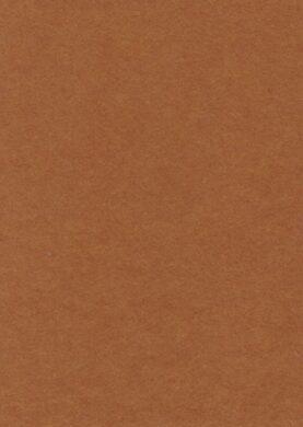filc zlatý YC-685(8594033830847)