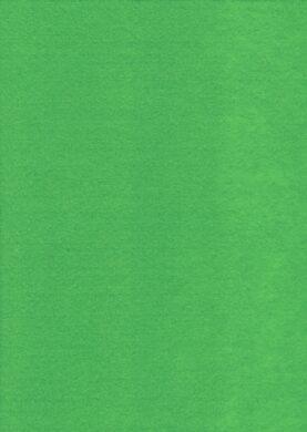 filc zelený světlý YC-671(8594033830908)