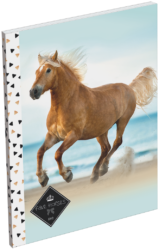 blok A7 Geo Horse Beach 18004109