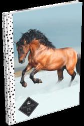 záznamní kniha Lizzy A5 čistá Geo Horse Snow 18022410