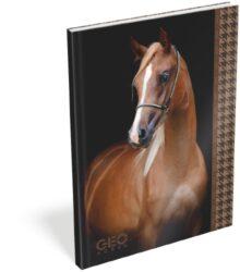 žzáznamní kniha Lizzy A6 čistá Geo Horse Black 15022501