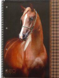 blok A4 70l linka kolegien bok Geo Horse Black