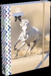 box na sešity A4 Geo Horse One 17268106