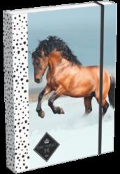 box na sešity A5 Geo Horse Snow 18268210