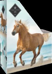 box na sešity skládací A4 Geo Horse Beach 18569509