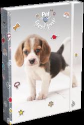 box na sešity A4 Pet Good Pup 19628414
