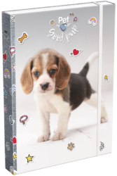 box na sešity A4 Pet Good Pup 19628414