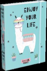 box na sešity A5 Lollipop Lama LOL 20766147