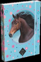 box na sešity A5 Wild Beauty Blue 20766606