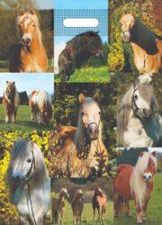 taška 50 x 35 koně-PRODEJ POUZE PO BALENÍ !!